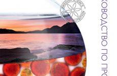 Новое Руководство по продукции оздоровления (Wellness) от Орифлэйм для ВАС!!